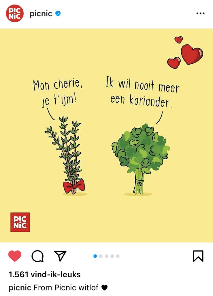 Picnic gebruikt humor op social media